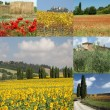 Foto Stock: Tuscany collage