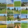 Collage with wonderful Tuscan landscape — Stock Photo