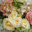 Roses composition - Stock Photo