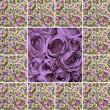 Stock Photo: Collage with violet roses and floral pattern