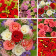 Collage with roses - Foto Stock