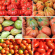 Assorted tomato collage - Stock Photo