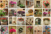 Gardening collage — Foto Stock