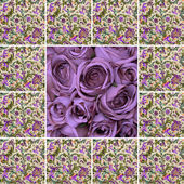 Collage with violet roses and floral pattern — Stock Photo