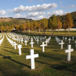 Florence American  War Cemetery in Italy - Stock Photo