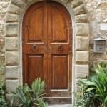 Wooden retro door with stone arch — Stock Photo #8310750