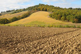 Landscape with plowed field and hill, Tuscany — Stock Photo