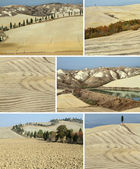 Collage with arid landscape in Tuscany — Stock Photo