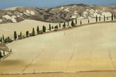 Landscape of Crete Senesi — Stock Photo