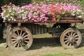 Uprawianie ogródu — Zdjęcie stockowe