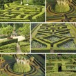 Collage with italian gardens - Stock Photo