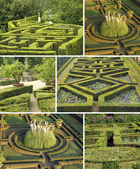 Collage with italian gardens — Stock Photo