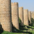 Endless medieval city walls — Stock Photo