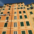 Ligurian colorful high houses in Camogli — Stock Photo