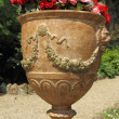 Antique garden vase with begonias flower — Stock Photo