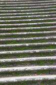 Mossy stairs — Stock Photo
