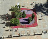 Flowerbed seen from up — Stock Photo