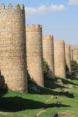 Endless medieval city walls — Stock Photo