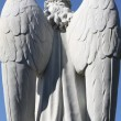 bevingade angel — Stockfoto #8517192