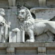 Venetian lion — Stock Photo