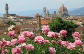 Florence — Stockfoto