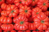 Organic tomatoes background — Stock Photo