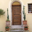 Front door with cacti — Stock Photo #8611822