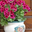 Pink petunias in rustic pot — Stock Photo #8611843