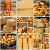 Collage with regional italian, french and polish cheese — Stock Photo