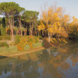Reflection in river of colorful trees in fall time — Stok fotoğraf