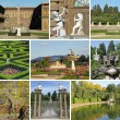 Italian garden collage — Stock Photo