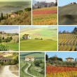 Stock Photo: Collage with tuscan houses in scenic landscape
