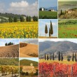 Collage with fantastic tuscan landscape — Stok fotoğraf