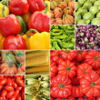 图库照片: Collage with fresh vegetables
