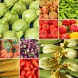 Zucchini and other vegetables composition — Stock Photo