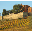 Collage with vineyards and castle, Brolio — Stock Photo