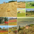 Landscape collage  with country houses   in Italy - Foto Stock