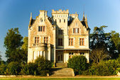 Gothic Chateau Lachesnaye winery in region Medoc, France — Stock Photo