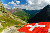 Swiss flag with view of Val Ferret and Great Saint Bernard in Swiss Alps — Stock Photo