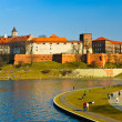 Royalty-Free Stock Photo: Wawel castle and Vistula boulevards in Cracow, Poland