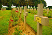 Polish war cemetery - many crosses in Normandy, France — Stock Photo
