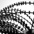 Razor wire — Stock Photo #8301374