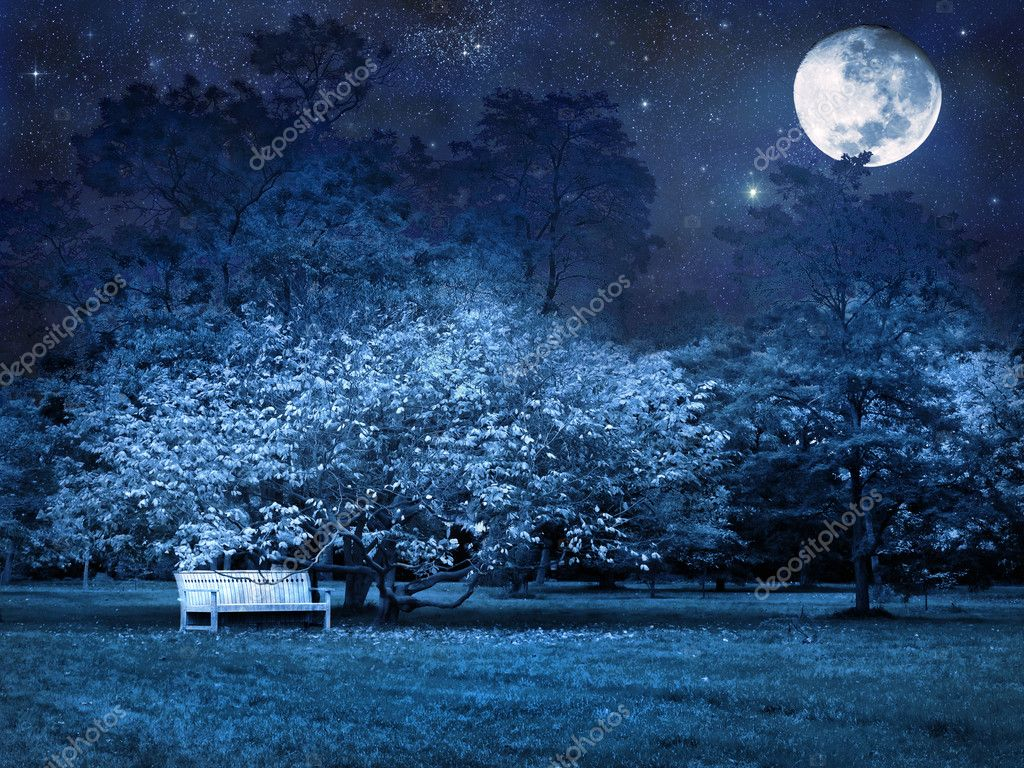 Mystical full moon starry night in park — Stock Photo #8287959