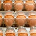 Яйца в коробке — Стоковое фото