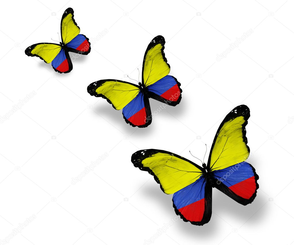 Three Colombian flag butterflies, isolated on white — Stock Photo #10039949