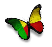Benin flag butterfly, isolated on white — Stock Photo