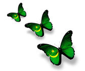 Three Mauritanian flag butterflies, isolated on white — ストック写真