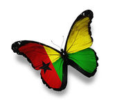 Guinea-Bissau flag butterfly, isolated on white — Stock Photo