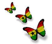 Tři ghana vlajky motýly, izolované na bílém — Stock fotografie