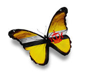 Brunei flag butterfly, isolated on white — Stock Photo